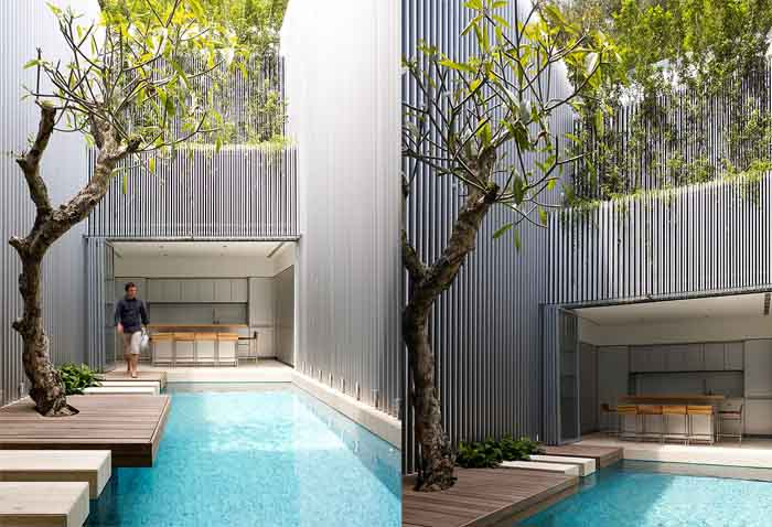 outdoor indoor pool with tree and frangipani gard private An Elegant Solution To A Long And Narrow Space