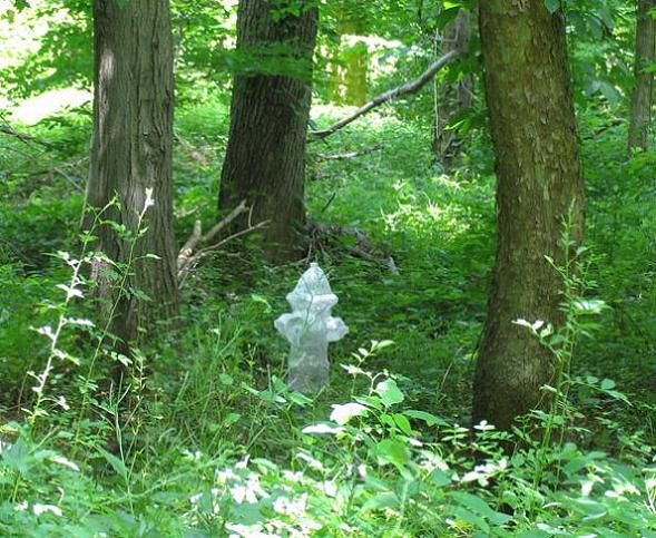 fire hydrant in nature tape art This is Art...with Packaging Tape! Meet Mark Jenkins