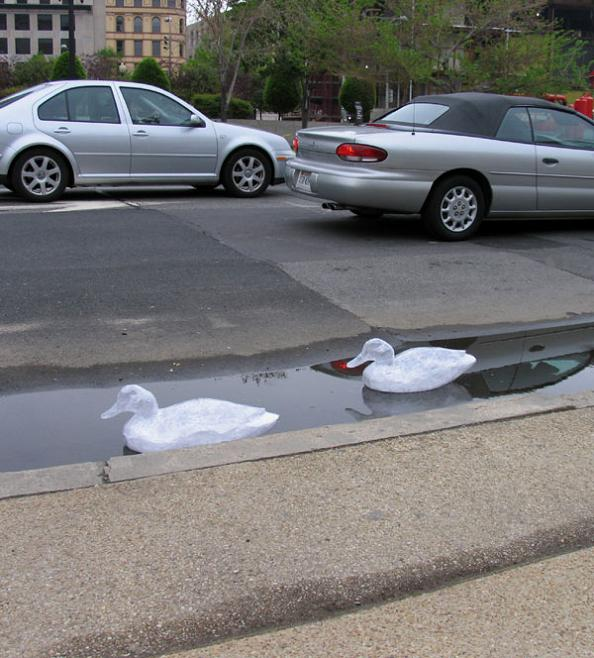 packing tape art swans mark jenkins This is Art...with Packaging Tape! Meet Mark Jenkins