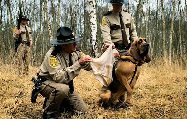 dog smelling underwear fml The Friday Shirk Report   November 6, 2009 | Volume 30
