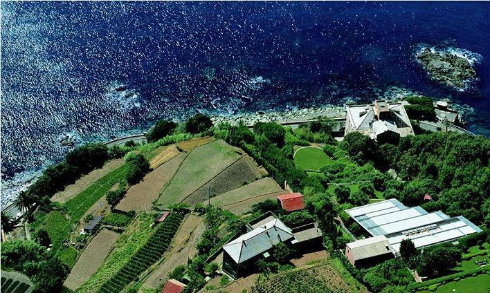 renzo piano building workshop punta neve italy Serenity Now: The Renzo Piano Building Workshop in Punta Nave