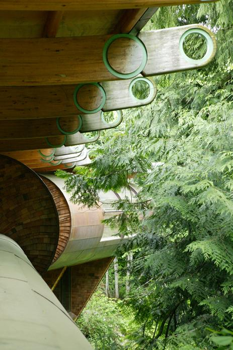 canopy living amongst the trees forest house Canopy Living: The Ultimate Tree House
