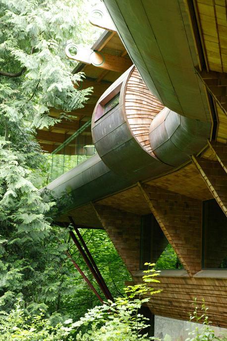 insane tree house design oshatz wilkinson Canopy Living: The Ultimate Tree House