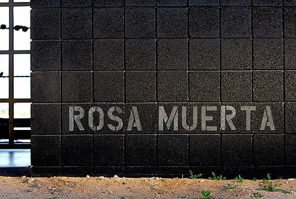 rosa muerta house rental joshua tree desrt national park What Happens When a Punk Rocker Designs a Desert Home?