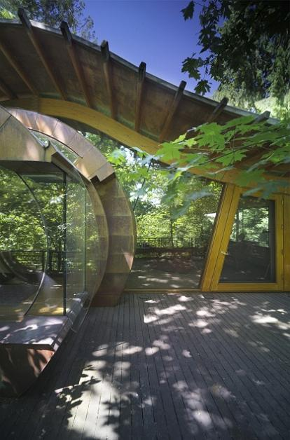 tree house decks canopy living the ultimate tree house twistedsifter