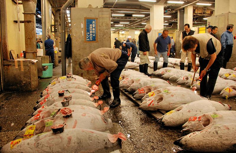 bluefin tuna auction largest in the world The Largest Fish and Seafood Market in the World