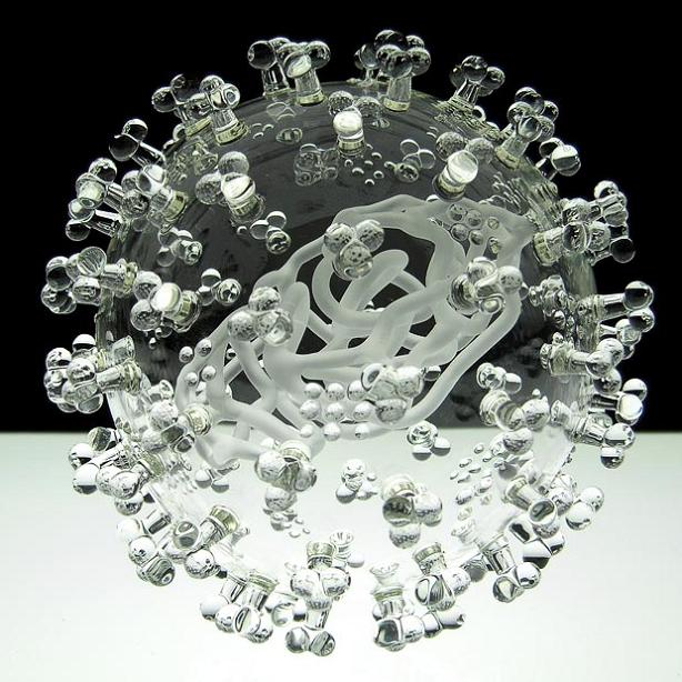 the-swine-flu-close-up-glass-sculpture