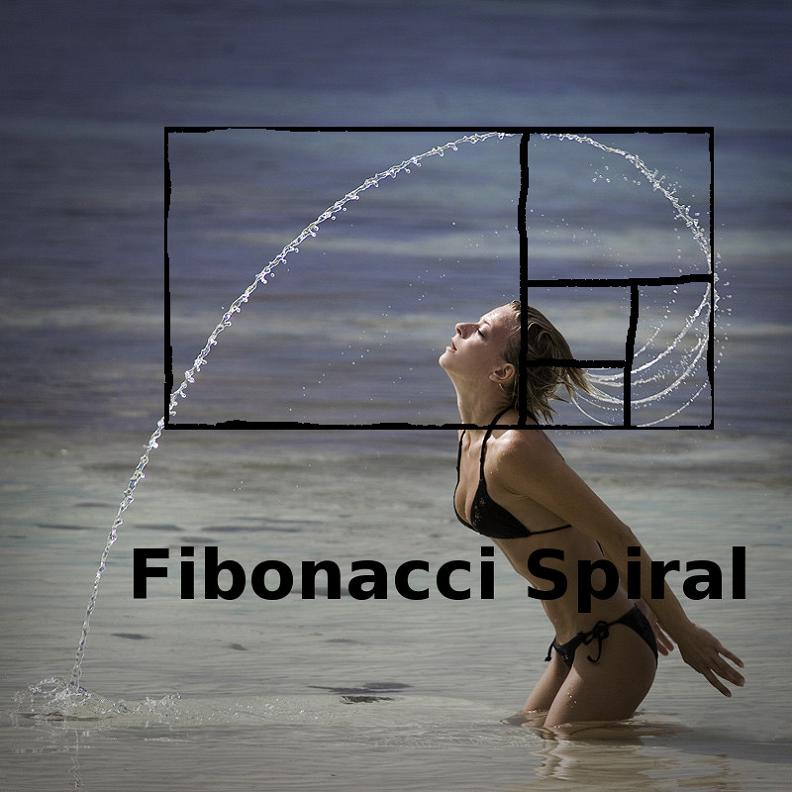fibonacci numbers sequence spiral in woman flipping her hair in water Picture of the Day   February 21, 2010