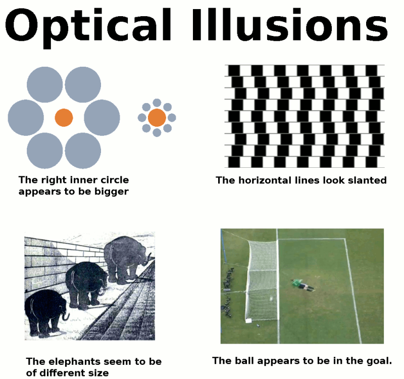 amazing optical illusions The Friday Shirk Report   July 2, 2010 | Volume 64