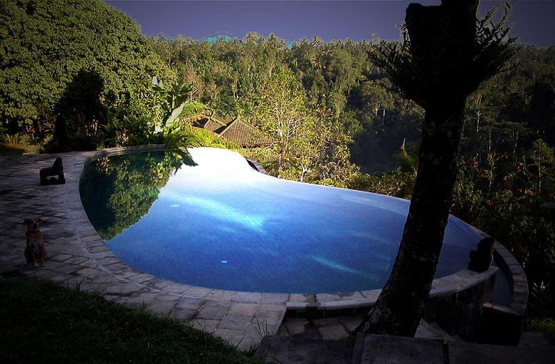 murnis villa ubud bali infinity pool 25 Stunning Infinity Pools Around the World