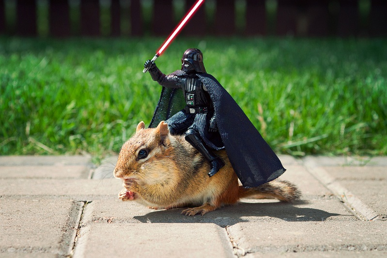 darth-vader-riding-a-chipmunk