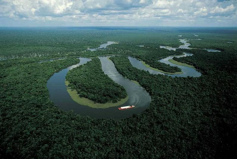 amazon river brazil aerial yann arthus bertrand The Incredible Aerial Photography of Yann Arthus Bertrand [25 pics]
