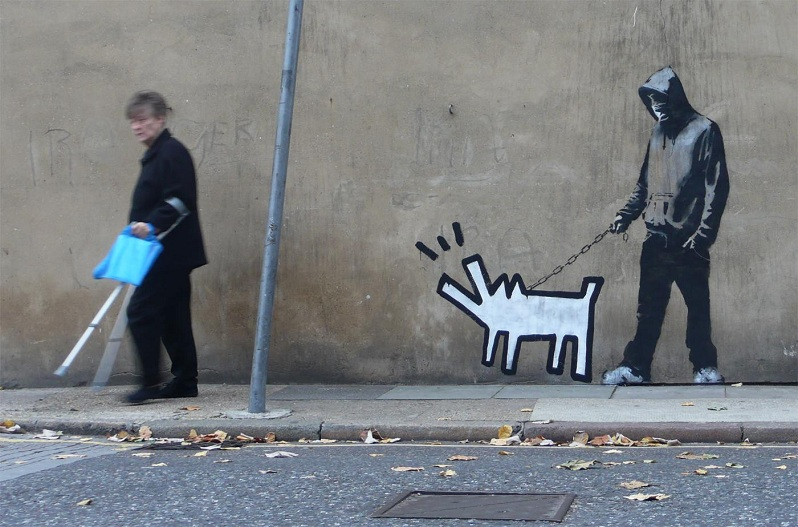 Picture of the Day: Haring'sHound