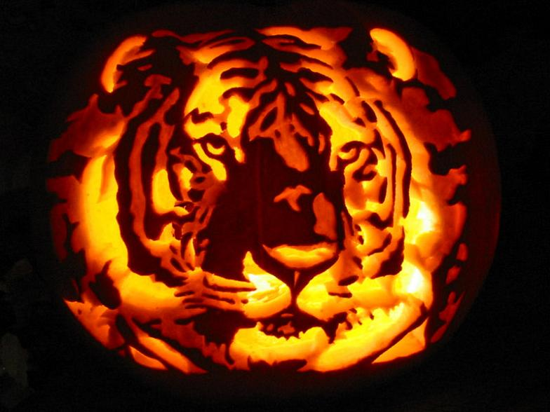 Awesome Halloween Pumpkins Part - 16: Tiger Pupmpkin Carving 25 Mind Blowing Halloween Pumpkins