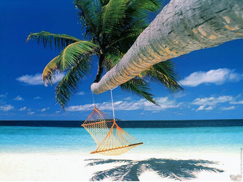 bora bora french polynesia 14 25 Perfect Places for a Hammock