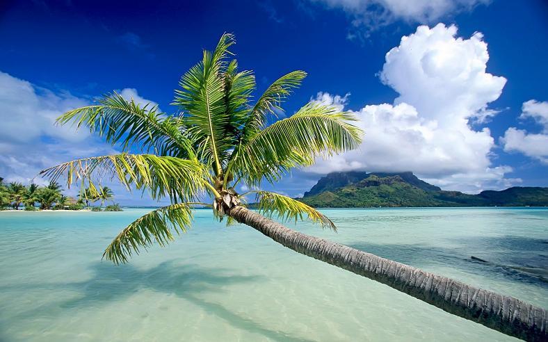 bora bora french polynesia 16 25 Stunning Photographs of Bora Bora