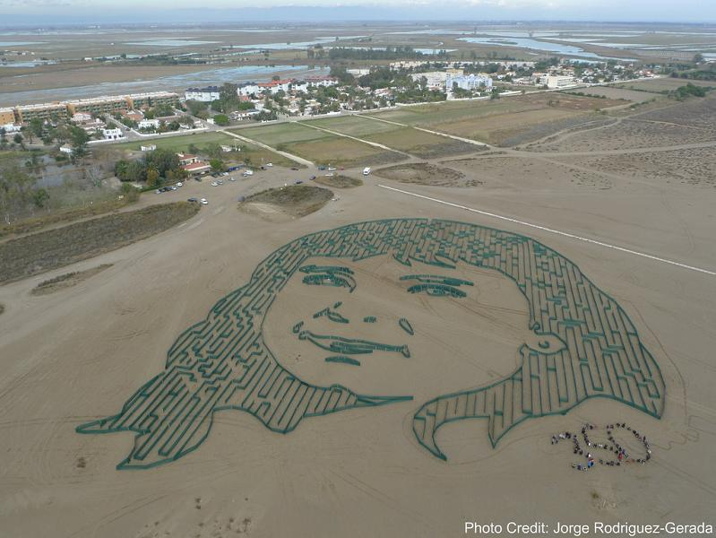 galc2b7la by jorge rodriguez gerada delta del ebro spain 350 Earth: Worlds First Art Exhibit Visible from Space