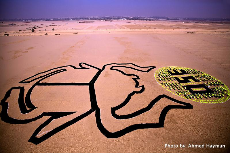 solar scarab by sarah rifaat cairo egypt 350 Earth: Worlds First Art Exhibit Visible from Space