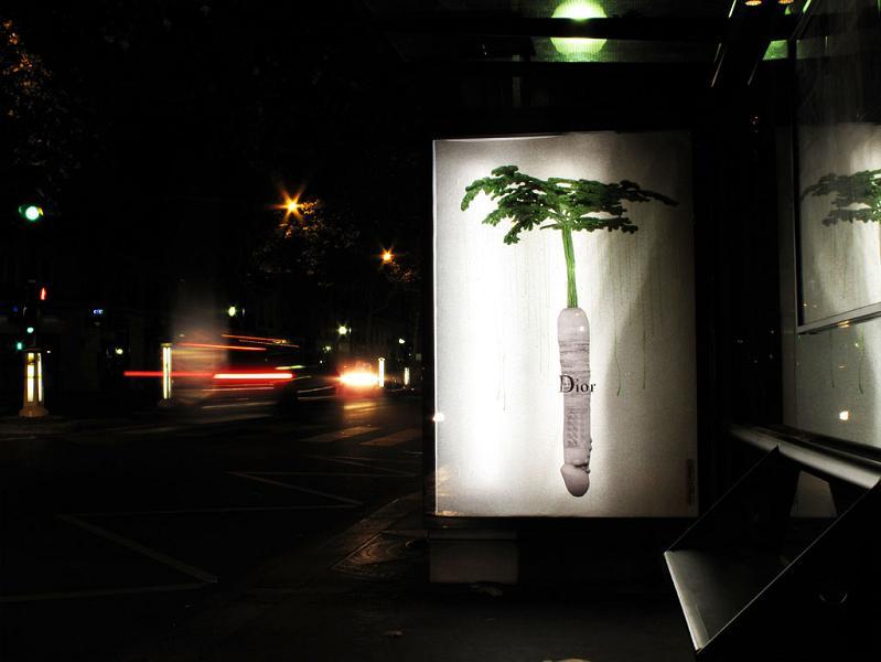 ludo-street-art-natures-revenge-13
