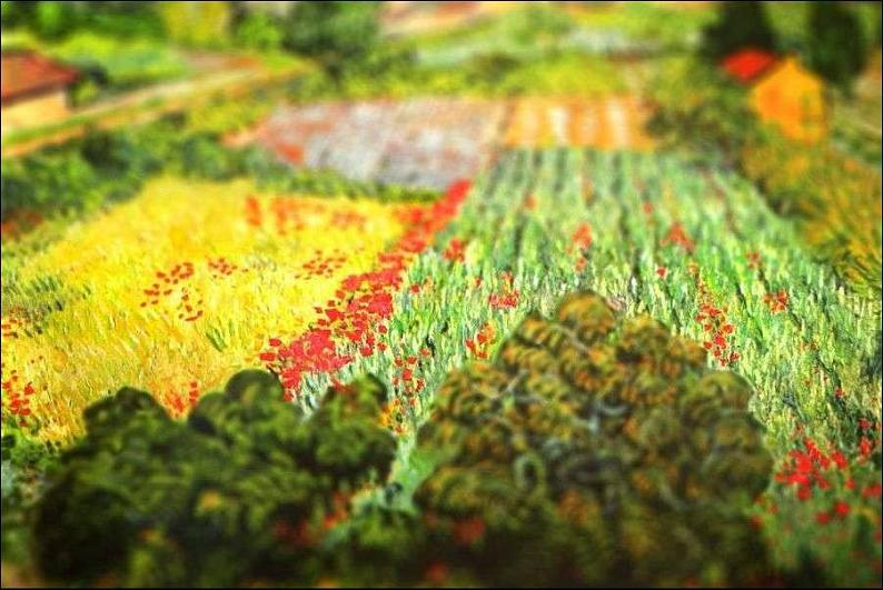 tilt shift van gogh field with poppies painting Amazing Tilt Shift Van Gogh Paintings [16 Pics]