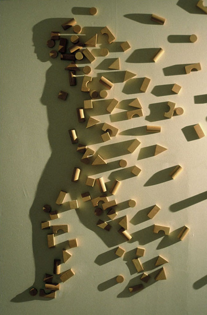Picture of the Day: Shadow Play with Building Blocks