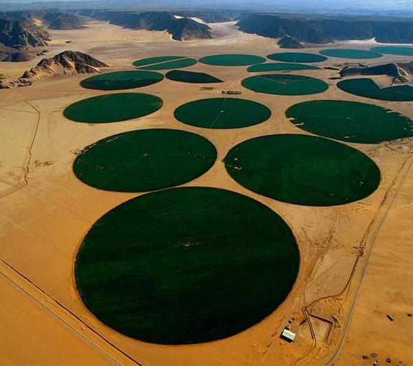 Center-Pivot irrigation, Ma'an, Jordan