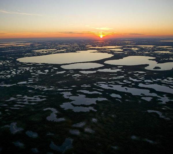 Humid area near Surgut, Siberia, Russia