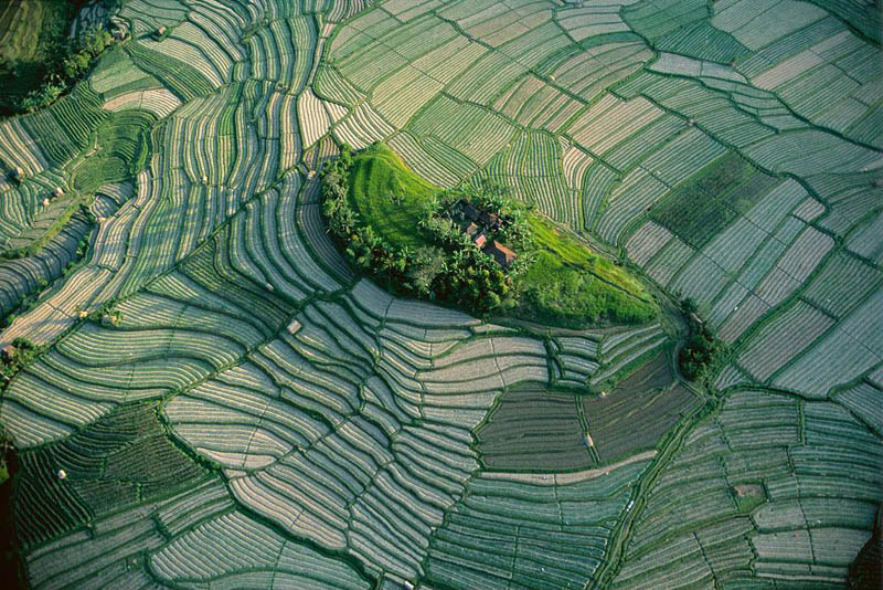 islet in the terraced rice fields of bali indonesia 25 Mind Blowing Aerial Photographs Around the World