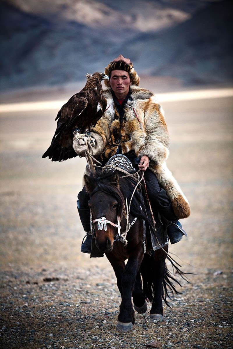 mongolian hunter with eagle riding horse Picture of the Day: Certified BADASS