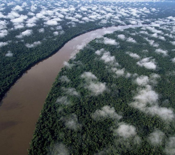 The Orinoco River near the Esmeralda (Amazon Rain Forest), Venezuela