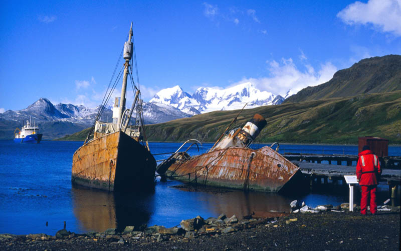 abandoned whaling boats at grytviken south georgia 25 Haunting Shipwrecks Around the World