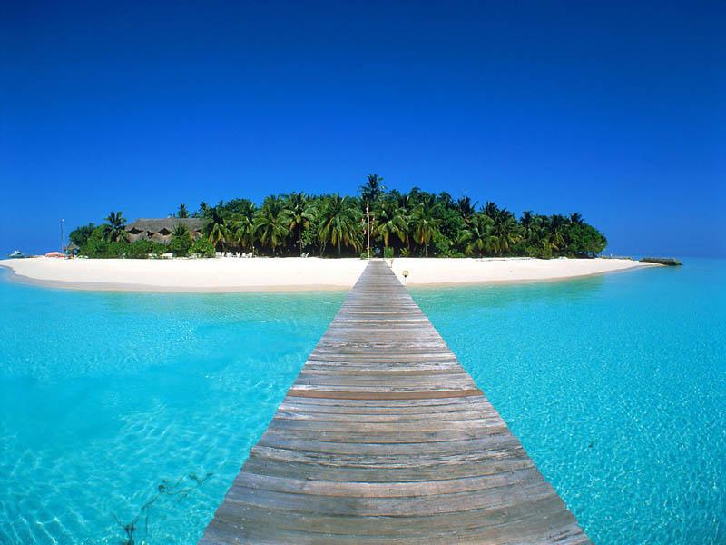 Nature: Tropical Island Maldives, picture nr. 19928