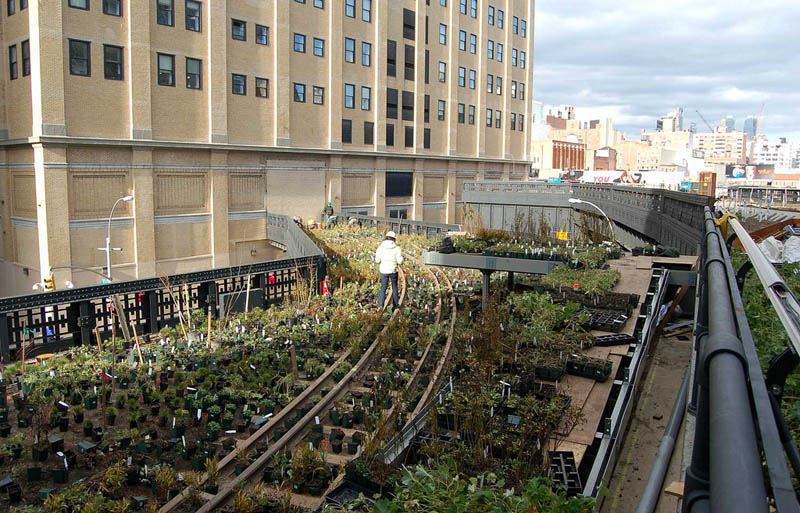 gardening high line nyc The High Line: New Yorks Park in the Sky [25 pics]