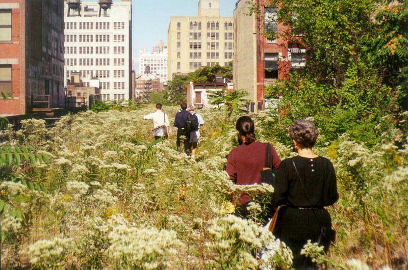 high line covered in green The High Line: New Yorks Park in the Sky [25 pics]