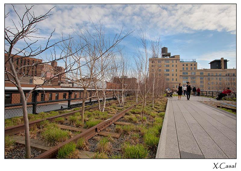 New York High Line Manhattan 12 The High Line: New Yorks Park In The Sky