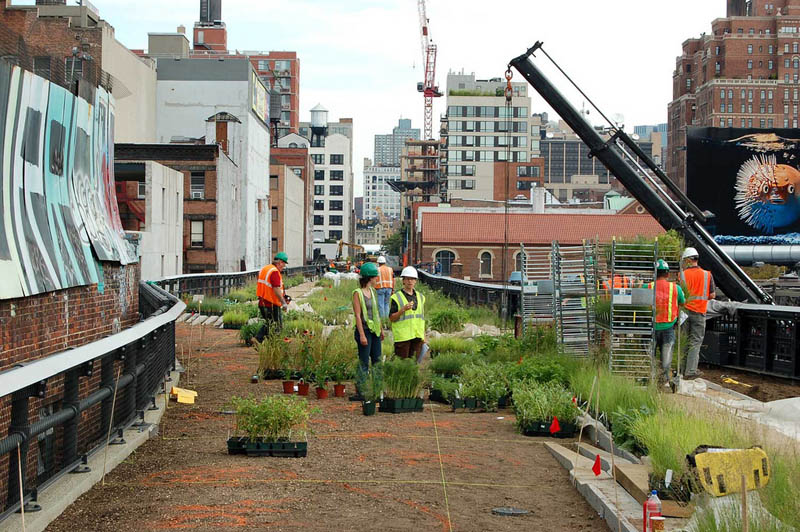 planting high line new york city The High Line: New Yorks Park in the Sky [25 pics]