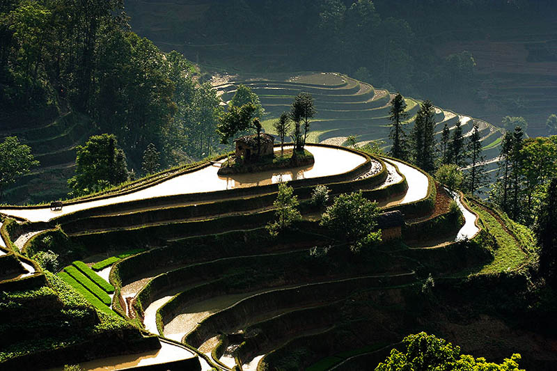 rice terraces 16 25 Unbelievable Photographs of Rice Terraces