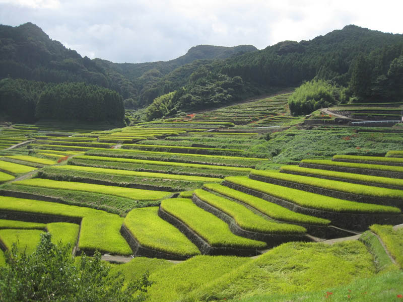 25 unbelievable photographs of rice terraces twistedsifter for What are terraces