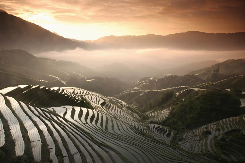 25 Unbelievable Photographs of Rice Terraces