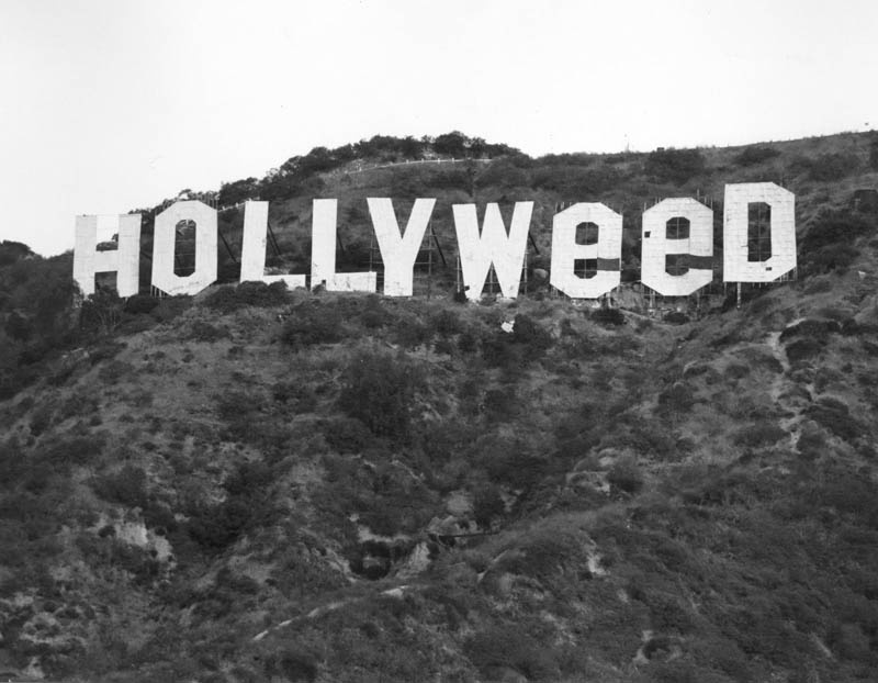 hollywood hollyweed sign This Day In History   July 13th