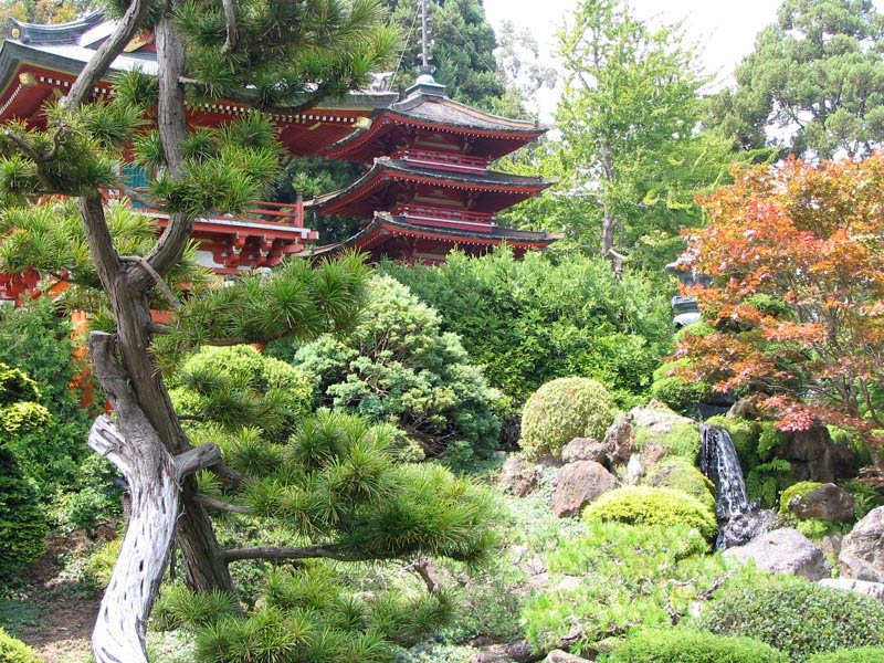 japanese tea garden in san francisco 20 Stunning Japanese Gardens Around the World