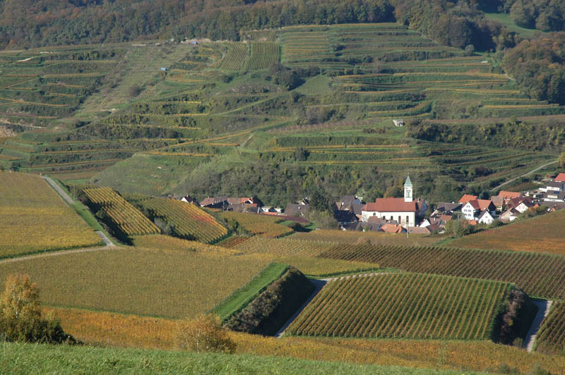 baden wurttemberg germany vineyard 35 Gorgeous Vineyards Around the World