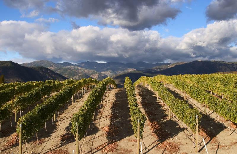 chelan washington benson vineyard 35 Gorgeous Vineyards Around the World