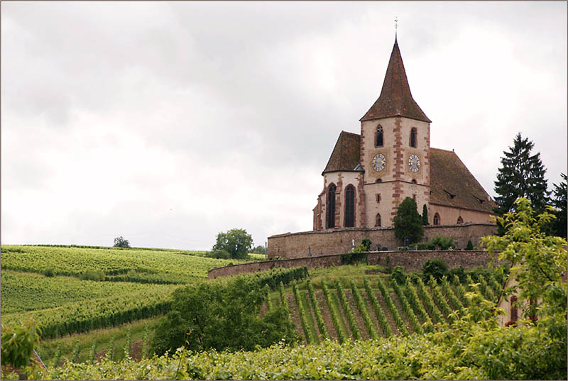hunawihr alsace france vineyard 35 Gorgeous Vineyards Around the World