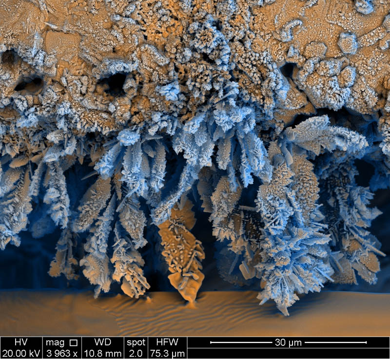 iron oxide electron microscope photograph francisco rangel Incredible Examples of Electron Microscope Photography