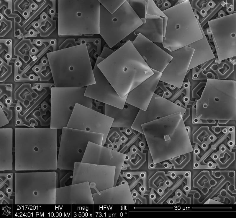 nano mirrors on dlp television regino sandoval Incredible Examples of Electron Microscope Photography