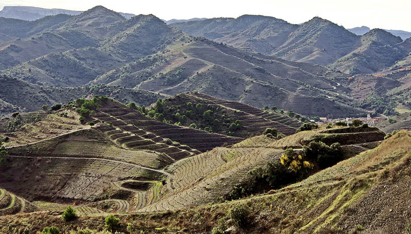 porrera priorat county catalonia 35 Gorgeous Vineyards Around the World