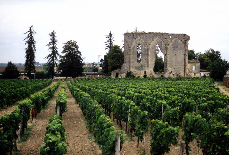 st emilion france vineyard 35 Gorgeous Vineyards Around the World