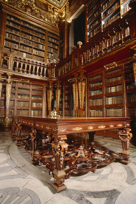joanina library university of coimbra 3 15 Beautiful Libraries Around the World