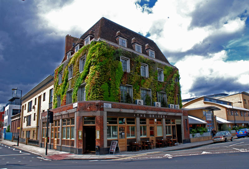 pacha  the driver london vertical wall garden 15 Incredible Vertical Gardens Around the World